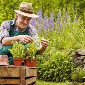 Ada banyak manfaat berkebun untuk keluarga